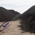 BJA Coal Service